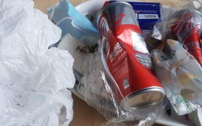 Müllsammelaktion des Elbi-Kurses